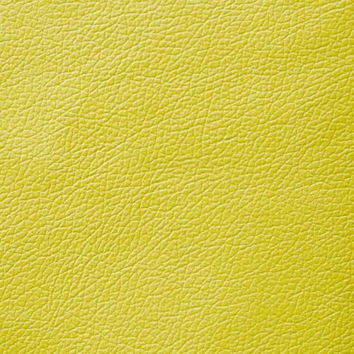 079 Domus Lime